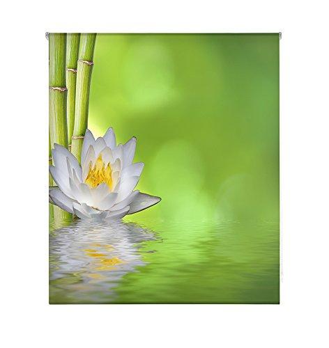 HappyStor HSCZ6040 Estor Enrollable Estampado Digital Zen Tejido Traslúcido Medida Total Estor:145x180 (**Solo Ancho Tela:141-142cm.**)