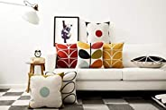 AEROHAVEN Cotton Decorative Throw Pillow/Cushion Covers (16 x 16 inch, Multicolour) - Set of 5