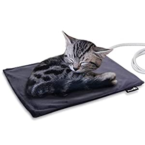 Pecute Deluxe Panier pour animal domestique pour chats et petits chiens de taille moyenne avec panier rectangulaire avec coussin amovible doux Gris