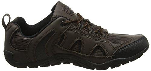 Gola Elias, Chaussures de Randonnée Basses Homme Marron (Brown/black)