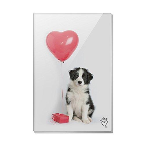 Border Collie Hund Herz Valentines Love Rechteck Acryl Kühlschrank Kühlschrank Magnet (Collie Hund-magnet)