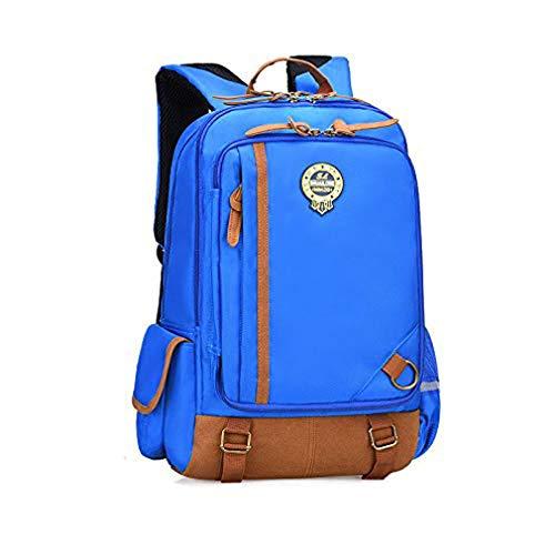 Faukku Premium Primärer Kinderrucksack, Freizeit wasserdichte Schultasche mit hoher Kapazität gegen Diebstahl für 1-3 Schüler im täglichen Gebrauch und bei Aktivitäten im Freien,SkyBlue