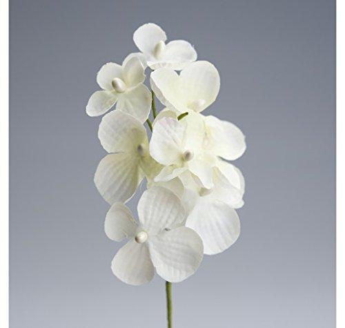Set 24 pezzi, bomboniera fiore bouquet