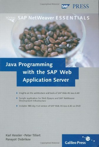 Java Programming with the SAP Web Application Server by Karl Kessler (2005-06-28)