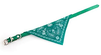 Dog Bandanna Scarf with Leather Collar (Large (16 inches), Green)