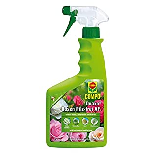 Compo Duaxo Rosen Pilz-frei AF 750 ml Fungizid gegen Pilzkrankheiten Zierpflanzen für Haus Gewächshaus und Garten