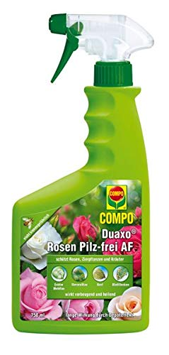 Compo inkl. Messbecher,
