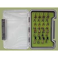 32GOLDHEAD ninfa moscas en un trucha moscas e inserciones de silicona caja–named moscas