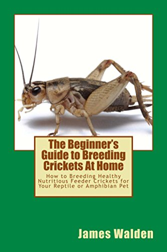 The Beginner's Guide to Breeding Crickets At Home: How to Breeding Healthy Nutritious Feeder Crickets for Your Reptile or Amphibian Pet (English Edition)