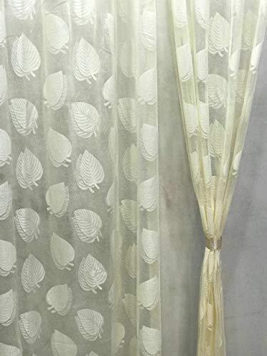 check MRP of tissue curtains for living room Purav Light
