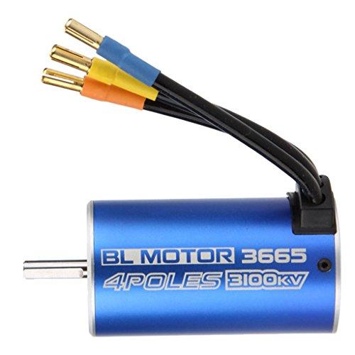 MagiDeal 3665 3100KV Wasserdichter Sensorless Brushless Motor für 1/10 RC Auto Boot Ersatzteil (Wasserdicht Motor)