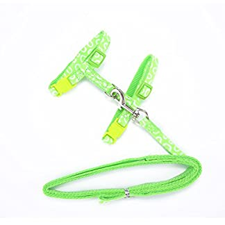 Aolvo Adjustable Kitten/Ferret/Rabbit/Cat Walking Harness and Leash for Walking Escape Proof, Bunny Soft Nylon Strap Belt Safety Rope Leads for Ferret, Cat and Other Small Pet Animals 41NtFTso4HL
