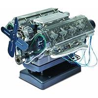 Haynes - Juguete de electrónica (Trends HM10) (versión en inglés)