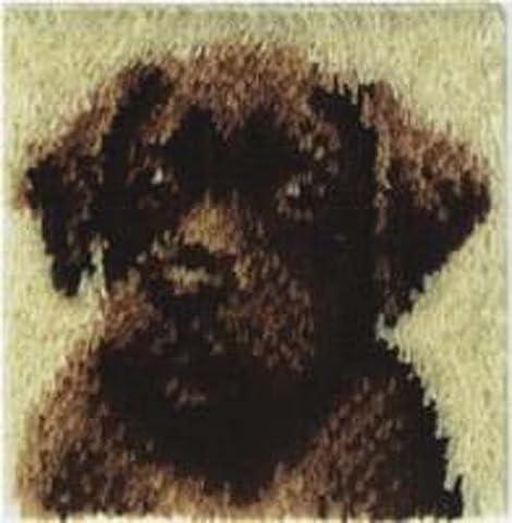 Wonderart Latch-Hook Kit, Chocolate Dog, 12