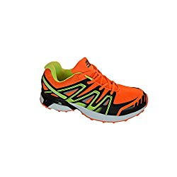 Sandic men's running shoes, training shoes, lightweight, fashionable and comfortable Gr. 41-46, beautiful colors