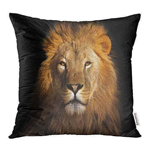Red Lion Schwarze Socken (WBinHua Zierkissenbezüge, Throw Pillow Covers, Red Lion Black Yellow Animal Face Portrait Head Strength King Front Print Pillowcases 18
