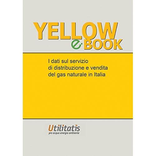 Yellow Book 2015. I Dati Sul Servizio Di Distribuzione E Vendita Del Gas In Italia