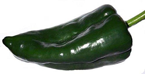 PLAT FIRM GERMINATIONSAMEN: 50 - Samen: RIESIG !!Ancho Pepper - Tolles Essen und röstender Pfeffer !!KOSTENLOSER VERSAND!!!!!