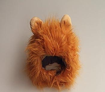 Habillement fantaisiste pour animal domestique, chat, chien, émulation crinière cheveux lion, chapeau, perruque tête oreilles, pour automne hiver - Dealglad®.
