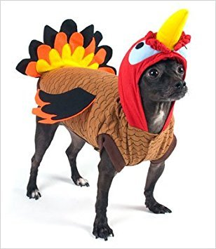 Thanksgiving Kostüm Für Hunde - Puppe Love Türkei Deluxe für Thanksgiving/Halloween-Kostüm für Hunde, Size 1 (8