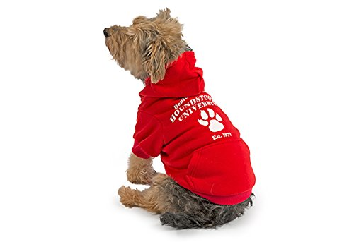 Paw Prints Hoodie (Ancol 'paw-Print Logo Hoodie für Hunde, klein)