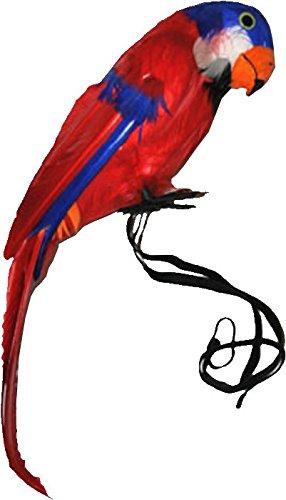 Großer Papagei mit echten Federn 39cm Dekoration Zubehör für Seeräuber Pirat Vogel f. Kostüm Pirat Hawaii Deko Piraten Südsee Strand Party