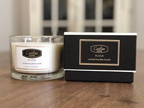 Duftkerzen, aus Sojawachs, Aromatherapie-Kerzen im Geschenkepack, Kerze mit 3 Dochten Caitlins Home Gros, Eucalyptus