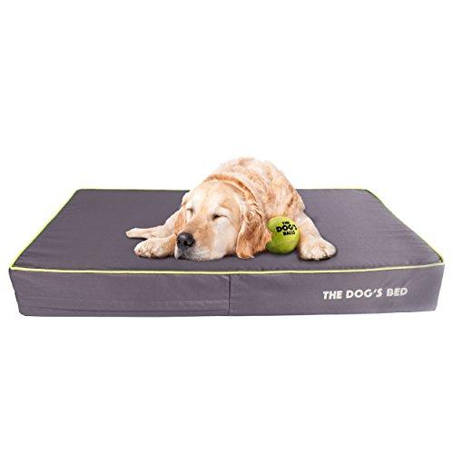 The Dog's Hundebett aus Memoryschaum (Cube Carry Case)