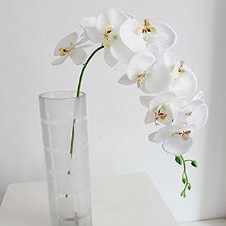 Asien Falso Domire 1 Pack Floral Artificial de la Mariposa Planta de la Flor de la orquídea (1 Unidad, Blanco)