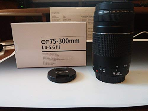 Canon EF 75-300mm f/4-5.6III Tele Zoom Objektiv für Canon EOS 7D, 60D, EOS 70D Rebel SL1, T1i, T2i, T3, T3i, T4i, T5, T5i, XS, Xsi, XT und XTI Digital SLR Kameras mit Zubehör (Rebel Dslr-kamera T5 Canon Eos)