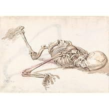 James Ward a scheletro umano. Inglese 17–XVIII secolo. Riproduzione poster su 200g/mq, formato A3in satin di seta basso su carta lucida