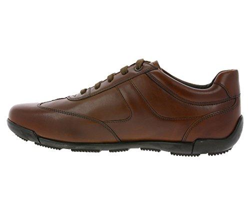 Sneaker Schnürhalbschuh Sportlicher U743BB atmungsaktiv Freizeitschuh Herren Geox Edgware Cognac Business CTXwxPq