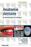 Anatomie dentaire - Du fondamental à la clinique. Préface du Pr José Braga