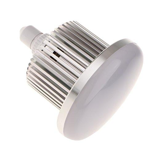 perfk E27 LED Glühlampe Weiß 5500K LED Tageslichtlampe für Fotografie Video Foto Studio Beleuchtung - 150W
