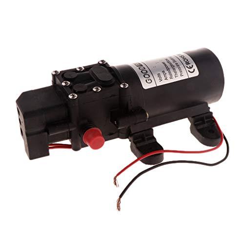 Fenteer 4.0L/Min Elektrische Wasserpumpe Bootpumpe Hochdruckmembran Pumpe - A