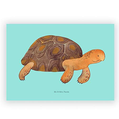 Mr. & Mrs. Panda Schreibwaren, Radierer, Radiergummi Schildkröte marschiert - Farbe Blau Pastell