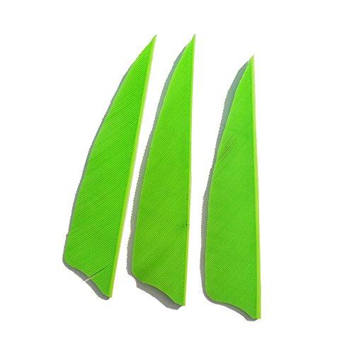 SHARROW 50 Stück Bogenschießen Naturfedern Pfeilfedern 3 Zoll Feder für Pfeil (Hellgrün)