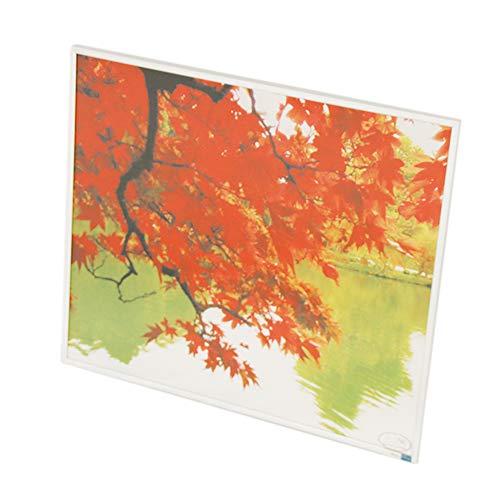 Panel de calefacción por infrarrojos, calefacción eléctrica, 180 W - 600 W
