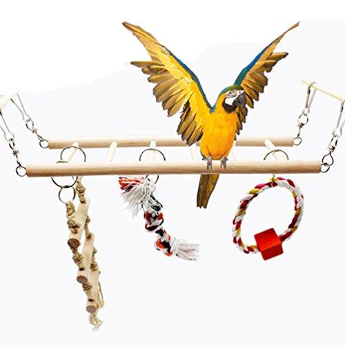 Bird Toys Set Holz Klettern Leiter Brücke Swing 4-teilig für Parrot Sittiche Nymphensittiche Sittiche Unzertrennliche Finch Kanarischen Kakadu Graupapageien Aras Edelpapageien Amazon Käfig Ständer Sitzstange