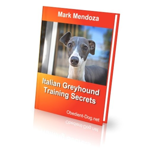Italian Greyhound (English Edition) -