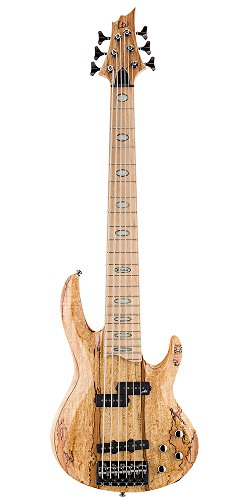LTD 310831 RB-1006 SM NAT E-Gitarre (Nat-stick)