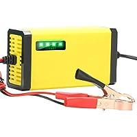 Hetesupply Cargador de batería de Goteo automático 12 V 800mA Cargador de batería Inteligente y Seguro