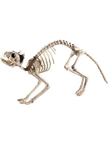 tt, 60x12x25cm, 46913 (Katze Halloween Kostüme Amazon)