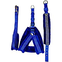 Pets Planet Combo of Soft Fur Adjustable Dog Harness Collar and Leash (Small Blue, 65-52 Cm)