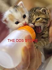 Pet Nursing Feeding Bottle with Cleaning Brush Replacement Nipple Nipple Opener for Cats Dogs Kitten Puppy