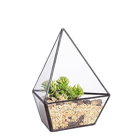 Terrarium à plantes moderne géométrique en verre à trois côtés, pour plantes et bonsaïs