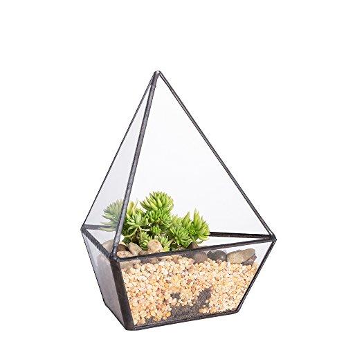 trois-cts-en-verre-moderne-gomtrique-terrarium-plantes-pots-plante-balcon-fougre-mousse-pot-de-fleur