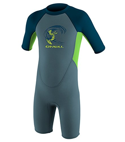 O'Neill 2017 Toddler Reactor 2mm Back Zip Shorty Dusty Blue/Dayglo 4867 Age/Size - 2 Years
