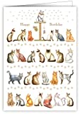 Geburtstagskarte - Motiv Katze Bilder
