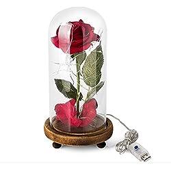 Rosa san valentín de bella y bestia con luz
